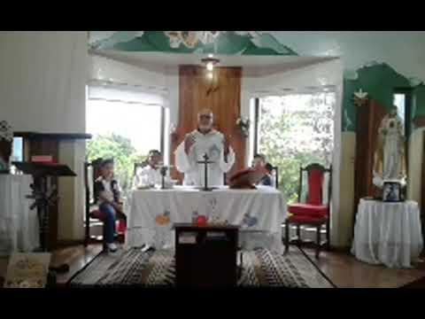 Santa Missa | 14.11.2020 | Sábado | Padre José Sometti | ANSPAZ