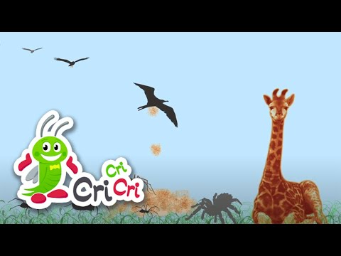 Cântece pentru copii - Prietenii