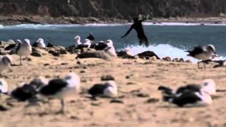 1 Round - Sea Movies