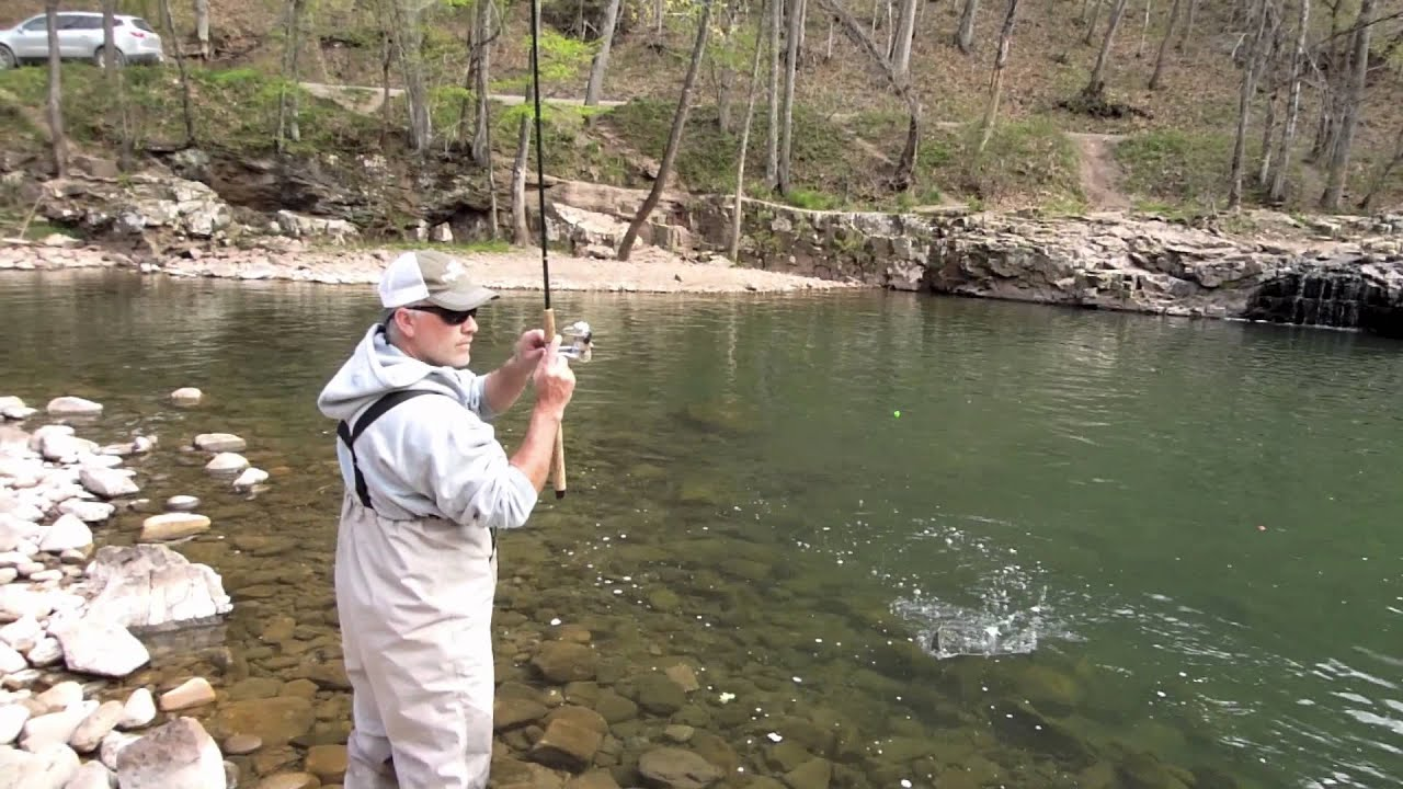 Trout fishing west virginia 39 s elk river youtube for Elk river wv trout fishing