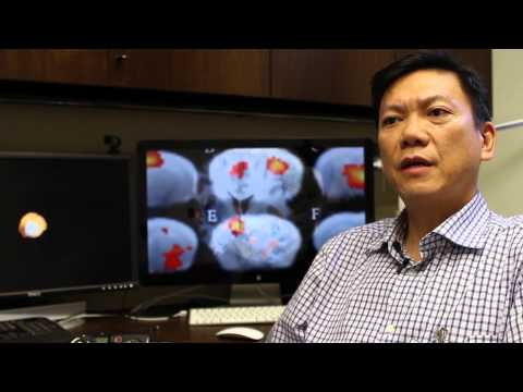 TMII - Neuroimaging Program