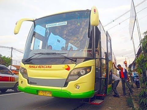 Pahala Kencana - Team Wonosobo - Bus Malam Cepat