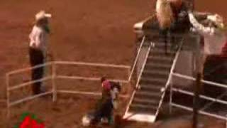 Dog-riding Monkey A Rodeo Hit