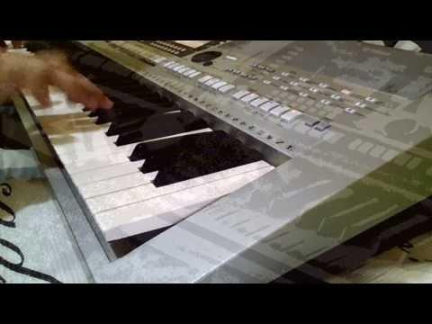 BRASILEIRINHO ( Instrumental ) WILLIAM DIAS SHOW
