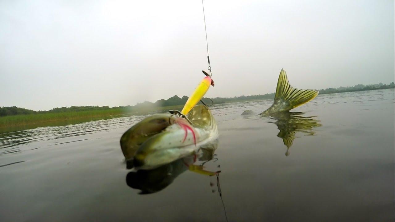 рыбалка на уку