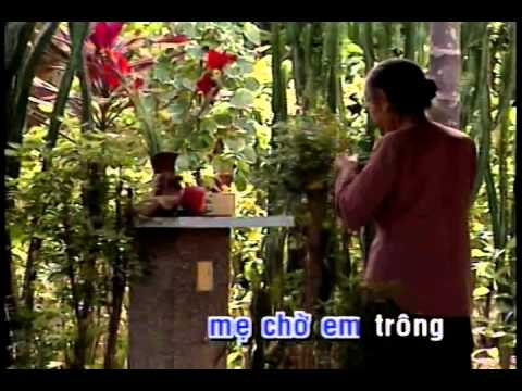 Chế Linh - Xuân Này Con Không Về