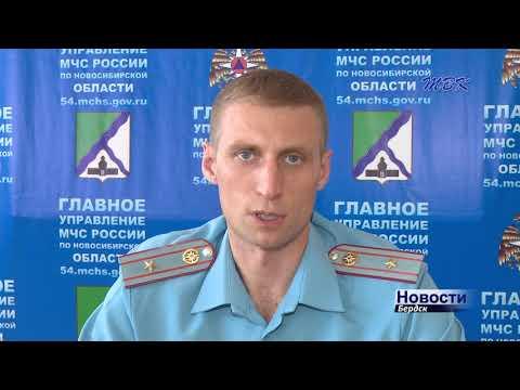 Тополиный пух, жара, пожары: в Бердске начинается опасная пора