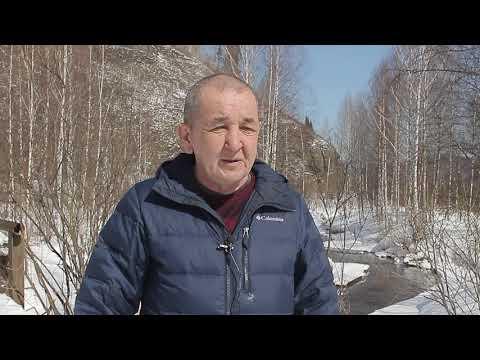 Кемеровский научный центр подозревают в выдаче недостоверных заключений