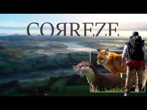 Un Hiver en Corrèze : loutres, renards et grande randonnée
