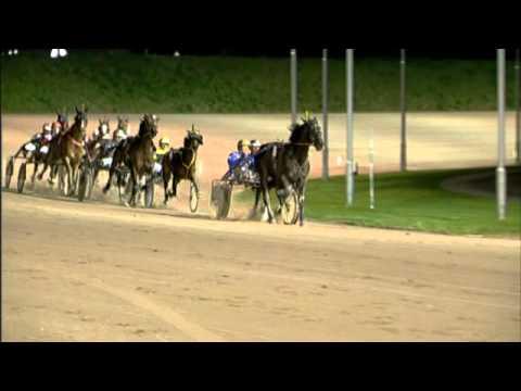 Vidéo de la course PMU CHAMPIONNAT D'HIVER (FINALE)