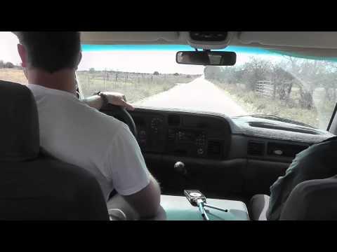 12 Valve Cummins Hauling Hay (cab view)