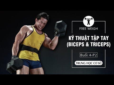 Kỹ Thuật Tập Luyện Thể Hình Free Weight Tay (Biceps & Triceps) Vai căn bản dành cho người mới P2