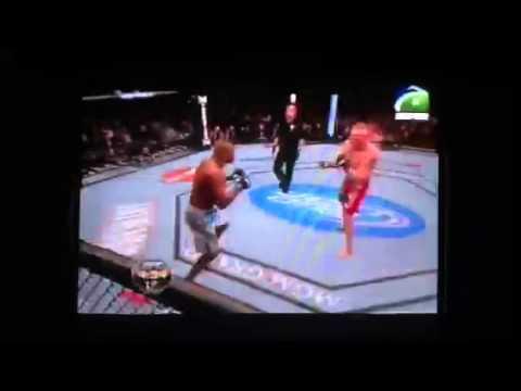 Brock lesnar vs Alistair overeem FULL FIGHT