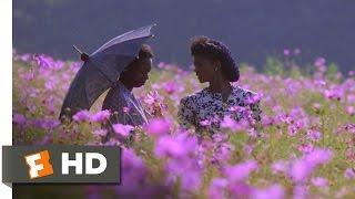 The Color Purple (5/6) Movie CLIP God Loves Admiration