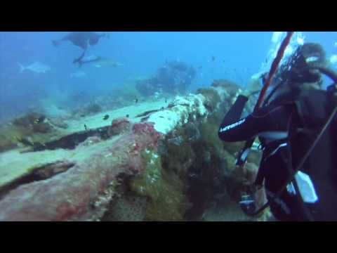 Diving the SS Yongala Shipwreck September 2013