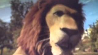 The Jungle Road To El Dorado Part 2