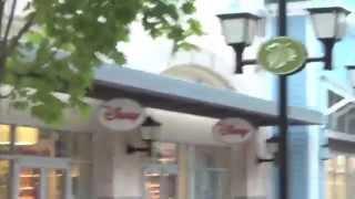 Bin's Toy Bin Family Vlog New Hampshire Road Trip