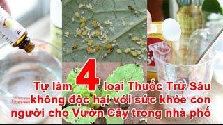 Tự làm 4 loại Thuốc Trừ Sâu không độc hại với sức khỏe con người cho Vườn Cây trong nhà phố