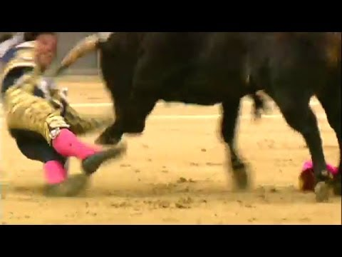 Footage, Madrid matadors gored by bulls at bullfighting festival launch, BBC News