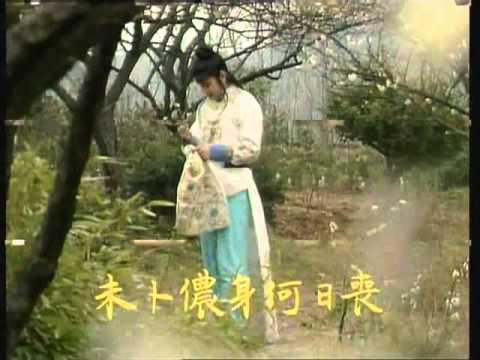 Táng hoa ngâm - Khúc hát chôn hoa (Hồng Lâu Mộng - Trần Hiểu Húc)