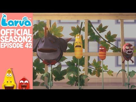 [Official] Beanstalks - Larva Season 2 Episode 42