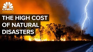 Why Natural Disasters Are Getting More Expensive
