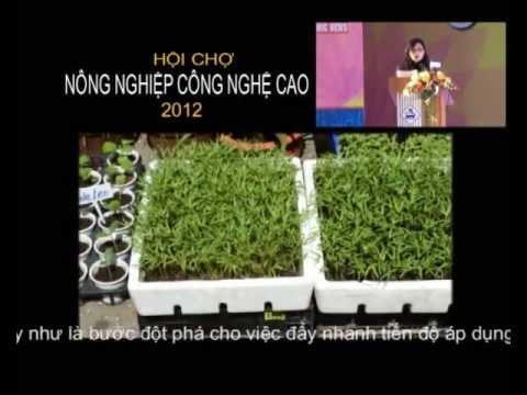 Nhà kính - Hội chợ Nông Nghiệp Công Nghệ Cao Tp. HCM 2012