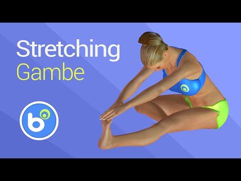 Stretching gambe: esercizi per allungare quadricipite, femorali, polpacci, adduttori ed abduttori