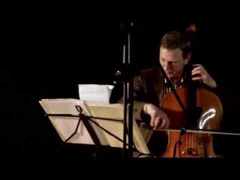 Hans Woudenberg, Cellist DoelenKwartet