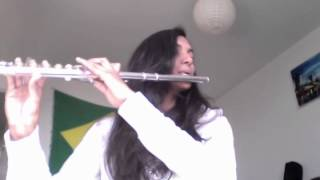 Call Me Maybe Carly Rae Jepsen Flute Cover