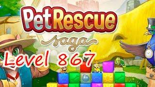 Pet Rescue Saga Level 867 (NO BOOSTERS)