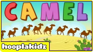 How To Spell Camel