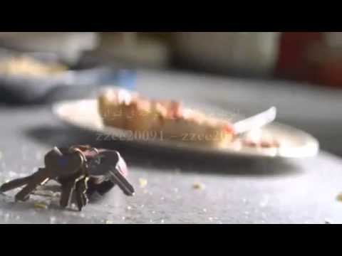 ترجمة ديفيد قيتا و سيا تيتانيوم David Guetta Ft  Sia)    Titanium   YouTube