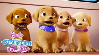 Barbie - Ihrisko pre psov
