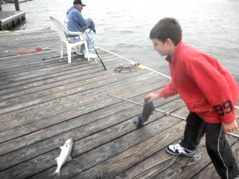 Point lookout ny high tide blue fishing with joey for Point lookout fishing