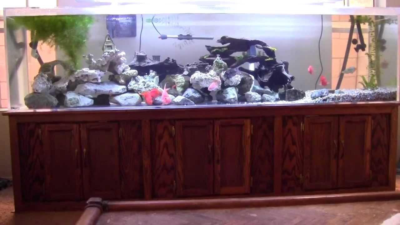 240 gallon aquarium for sale huge 240 gallon aquarium for 4 gallon fish tank