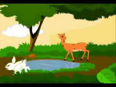 ammupappa   tamil nursery rhymes thullum muyal   youtube