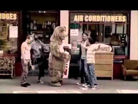 Té ngửa vì bắt nạt nhầm gấu thật