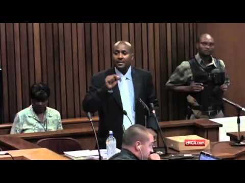 Steenkamp held her arms in a defensive position when Oscar fired