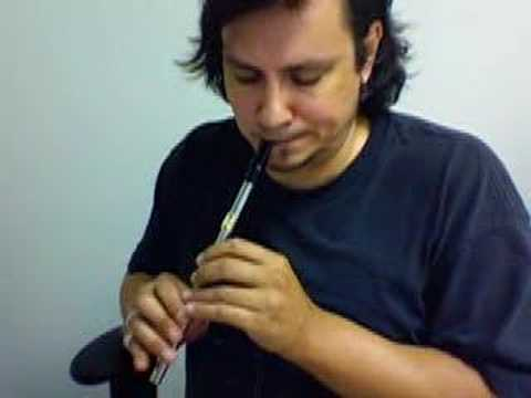 Irish flute tin whistle - Joe Cooley's Reel