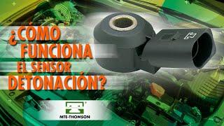 Cómo funciona el Sensor de Detonación?