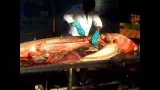 Amazing Discovery In Stomach Of Shark!