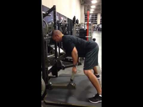 Pit Shark Reverse Grip Flat Row