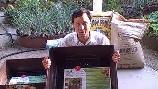 Easy Self Watering Patio Container Garden Growing Herbs