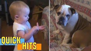 Bebê conversando com cachorro