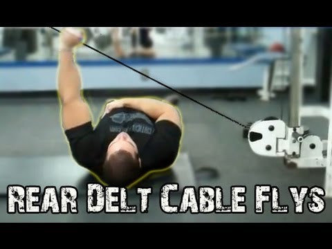 REAR DELT Cable Flyes Exercise - How To Build Up The Rear Deltoids