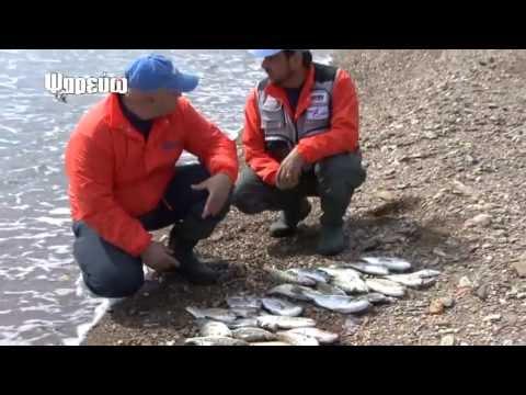Ψάρεμα στην Άνδρο