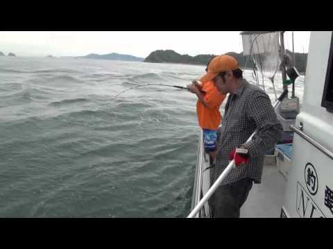 ルアー船 西岡遊漁(松山沖)ブリ・メジロ・ハマチ