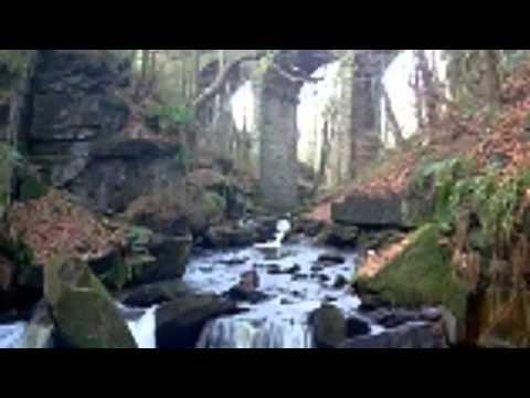 Healey Dell Nature Reserve Rawtenstall Lancashire
