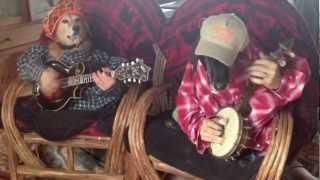 Dogs Play Bluegrass
